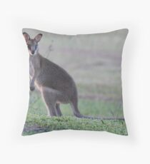 young Wallaby Throw Pillow