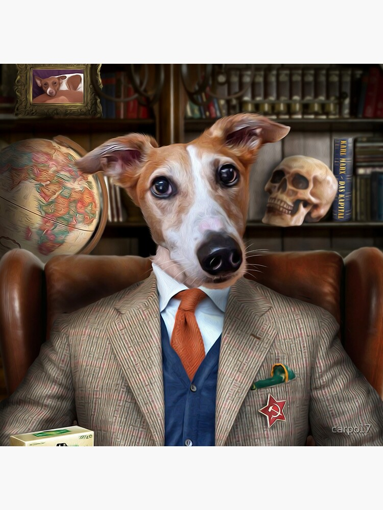 Lurcher Dog Portrait - Brambles by carpo17