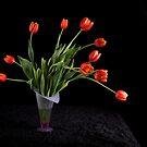 Tulips on Black by RandiScott