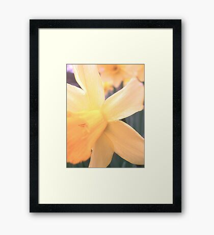 A Lighter Shade of Pale, Take II Framed Print