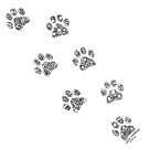 Cat tracks by -DIsForDoodle-
