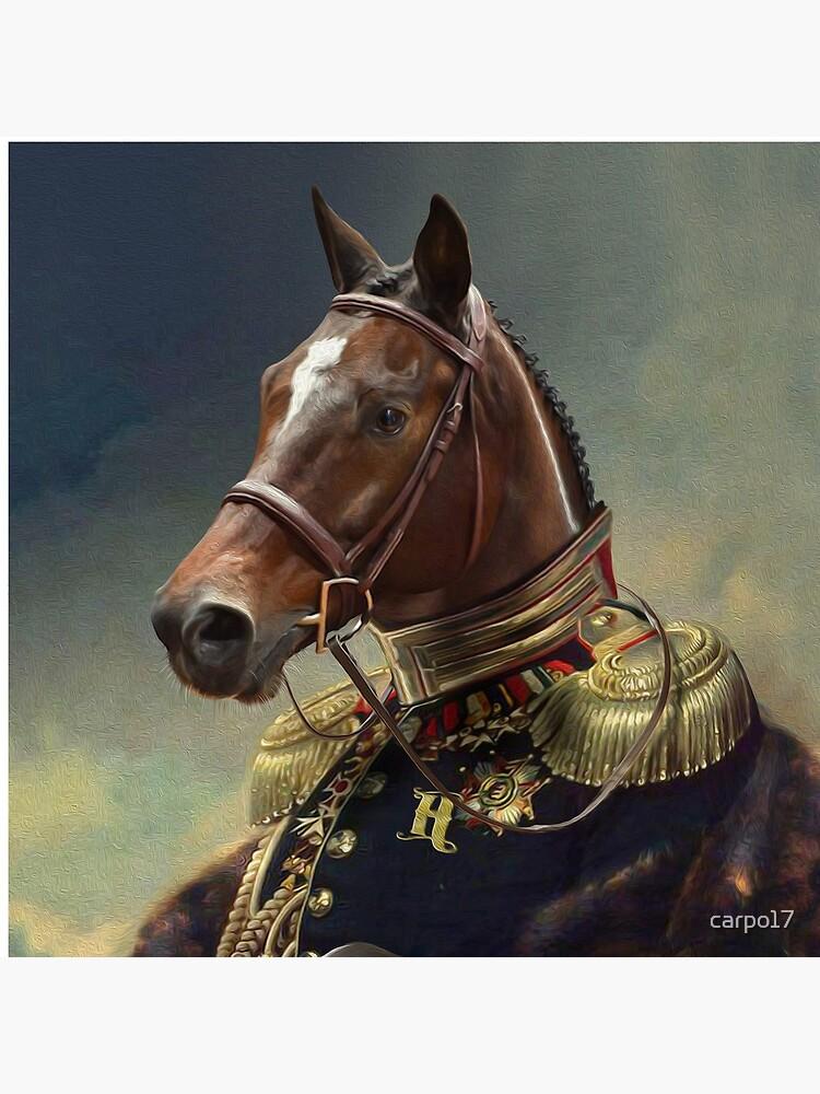 Horse Portrait by carpo17