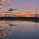 African sunrise by Rudi Venter