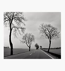 Road Through Windy Fields Photographic Print
