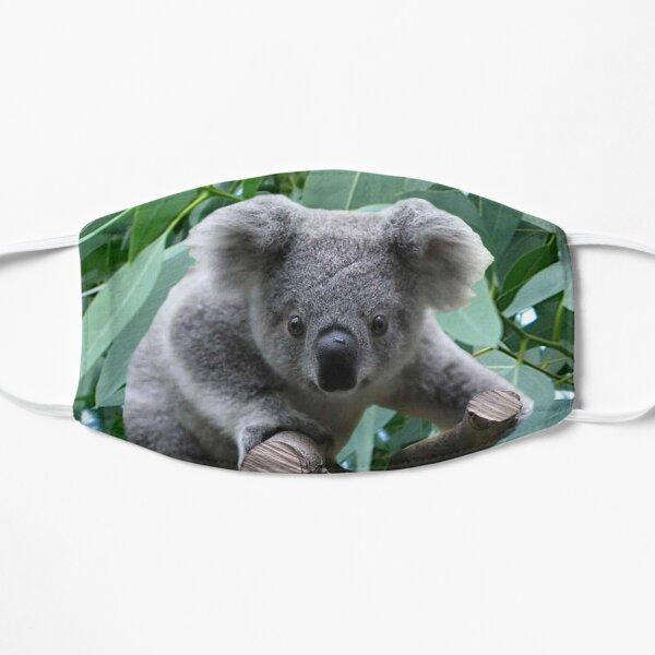 Koala and Eucalyptus Flat Mask