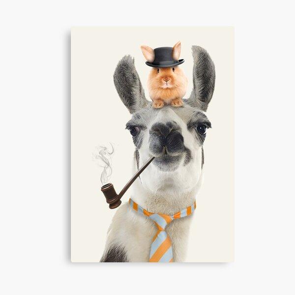 Daddy Cool Lama Canvas Print