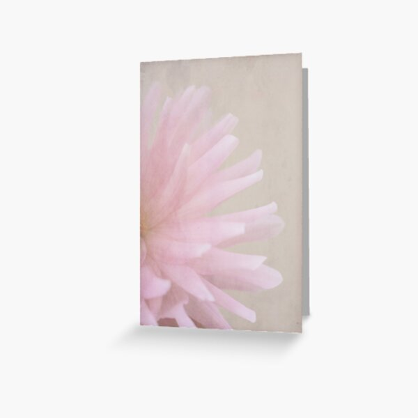I believe in pink. Greeting Card
