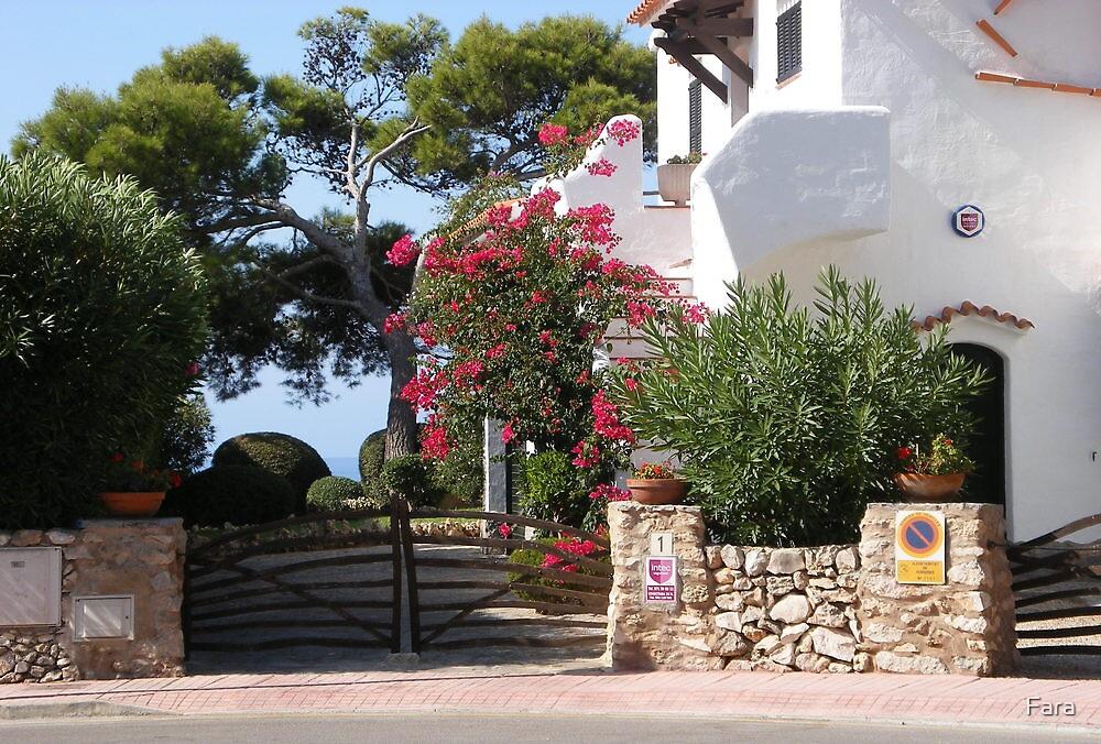 House And Garden In Cala Galdana  by Fara
