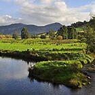 Wilmot River Tasmania by Terry Everson