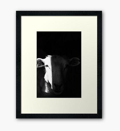 Evil Eye Framed Print