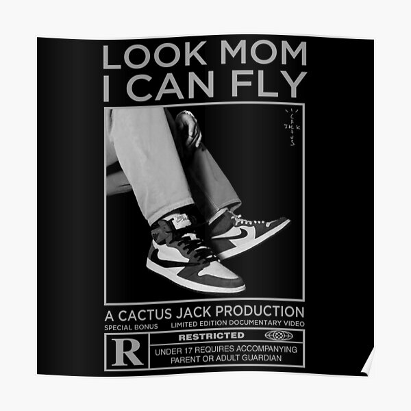 Look Mom I Can Fly Poster
