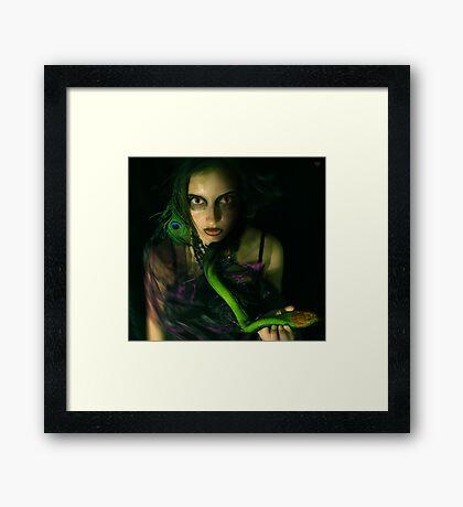snakebite Framed Print