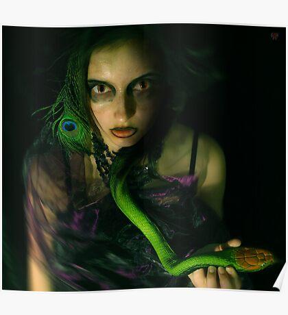 snakebite Poster
