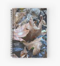 Fall in BC Spiral Notebook