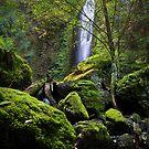 Gorton Creek Falls III by Tula Top