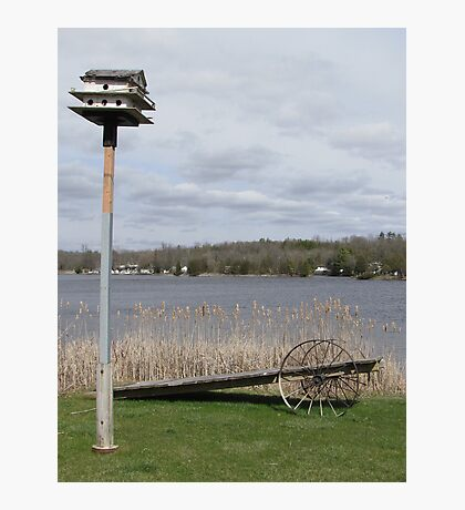 Bird House & Wagon Photographic Print