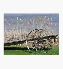 Cat Tails & Wagon Wheels Photographic Print
