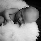 Hudson, 10 days old by Donna Jones