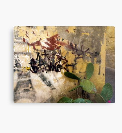 Graffiti and the Cactus in Lecce Metal Print