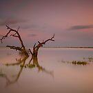 Beautiful Australia by donnnnnny
