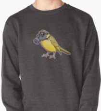 The Birds Aren't Singing Pullover