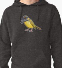 The Birds Aren't Singing Pullover Hoodie
