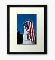 Freedom Sentry Framed Print