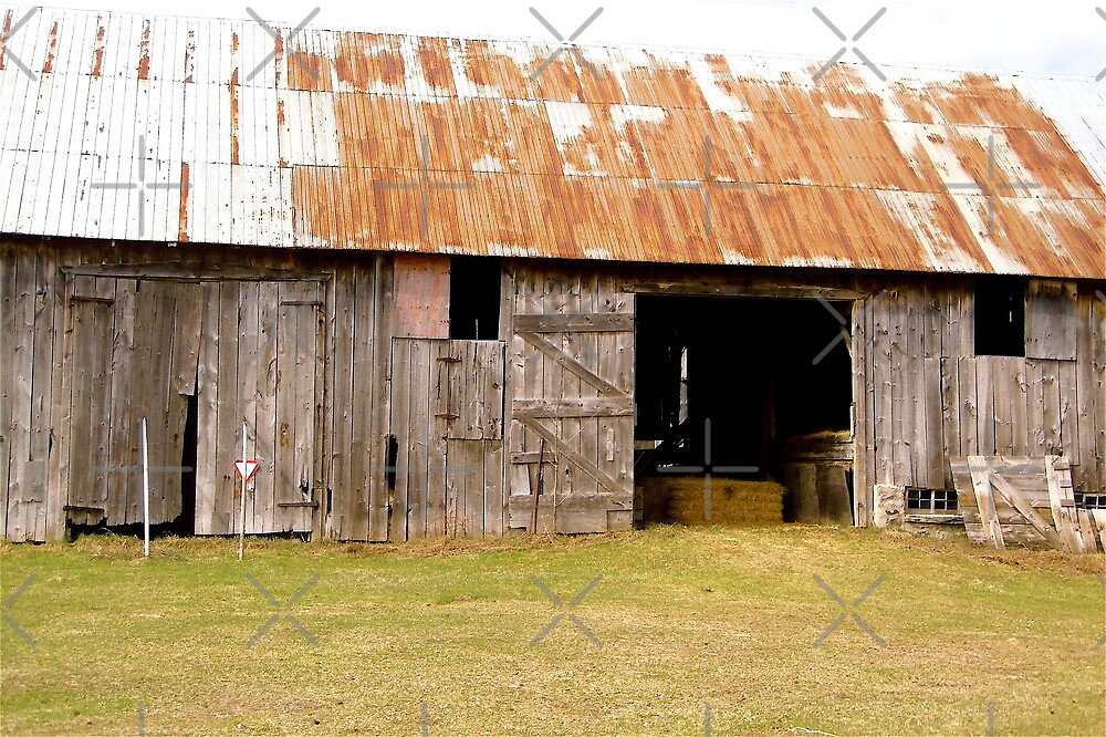Delapitated Barn by Shulie1