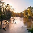 Murray river dawn by John Violet