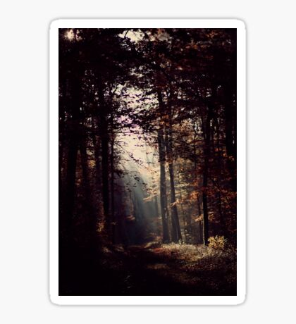 Magical forest Sticker