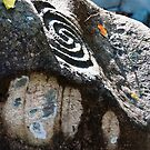 Altavista Petroglyphs by Lynnette Peizer