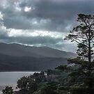 Dark lake by Louise Delahunty