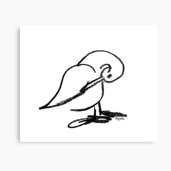 Duck scratching Metal Print