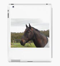 Andalusian  iPad Case/Skin