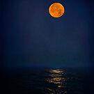 Radiant Moon by Lynnette Peizer