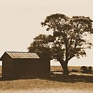 Farm Memories by Sharon Woerner