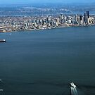 Seattle On The Horizon by starlitewonder