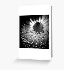 Form Forever Follows Function Greeting Card