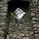 St.Mullin's Monastary - Window on High by rsangsterkelly