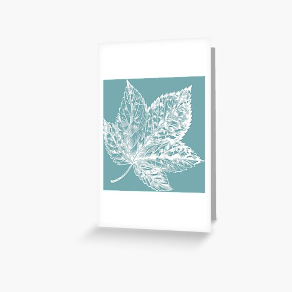 Canadian Leaf On Blue Greeting Card