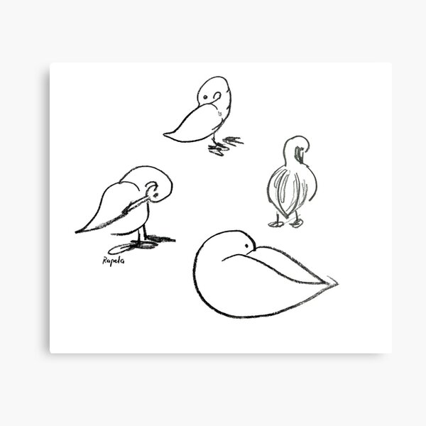 Four ducks Metal Print