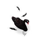 Black Swan by pencilplus