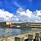 Olympic Beach, by Edmonds Ferry in Washington State by Barb White