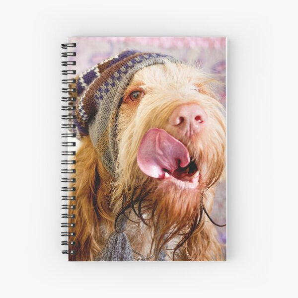 Woolly hat Spinone Spiral Notebook