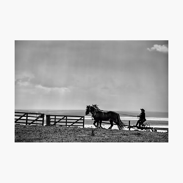 Ploughing the Field Photographic Print