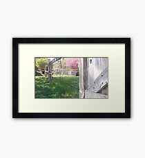 once upon a fence Framed Print