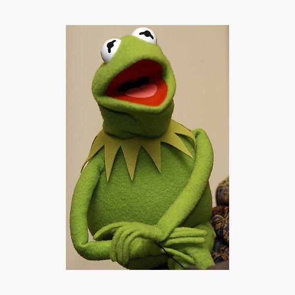 Kermit the Frog Photographic Print