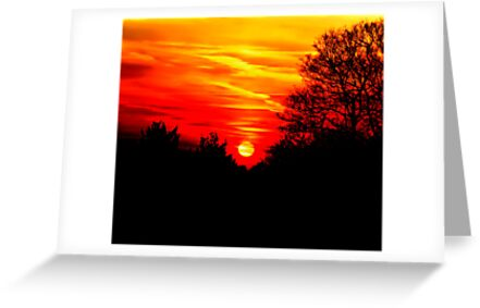 Red sunset by Jasna