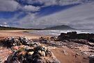 Diamond Head Beach by Terry Everson