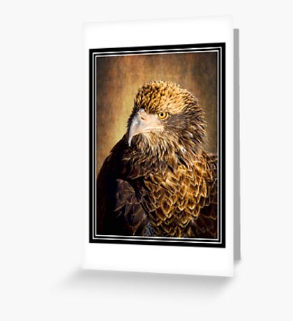 Fine Feathered Friend Greeting Card